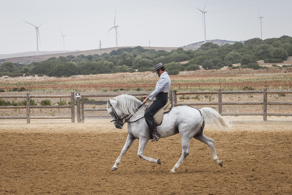 spain-luxury-travel-concierge-dmc-andalusia-horses-1
