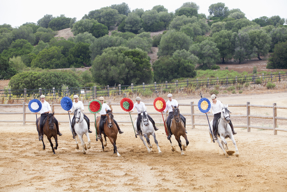 spain-luxury-travel-incoming-dmc-concierge-andalusia-cadiz-tradtition-horses-performances
