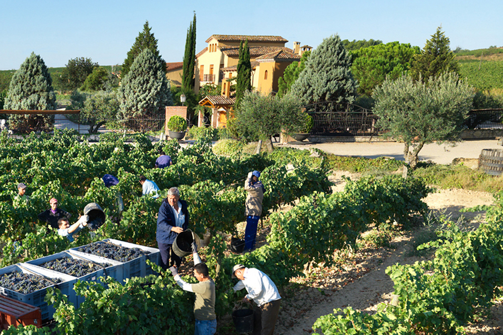 spain-luxury-travel-incoming-dmc-concierge-catalonia-cellars-wine-eco-harvest