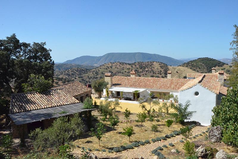 Villa Paradise (2)
